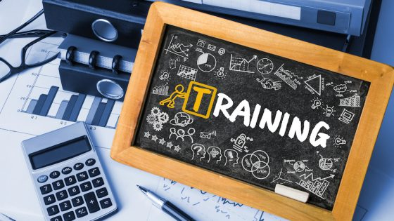 Research reveals the importance of training at work