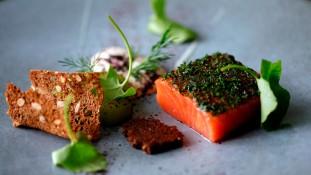 Salmon gravlax at Texture